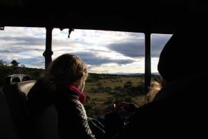 addo-elefanten-nationalpark-suedafrika_6583