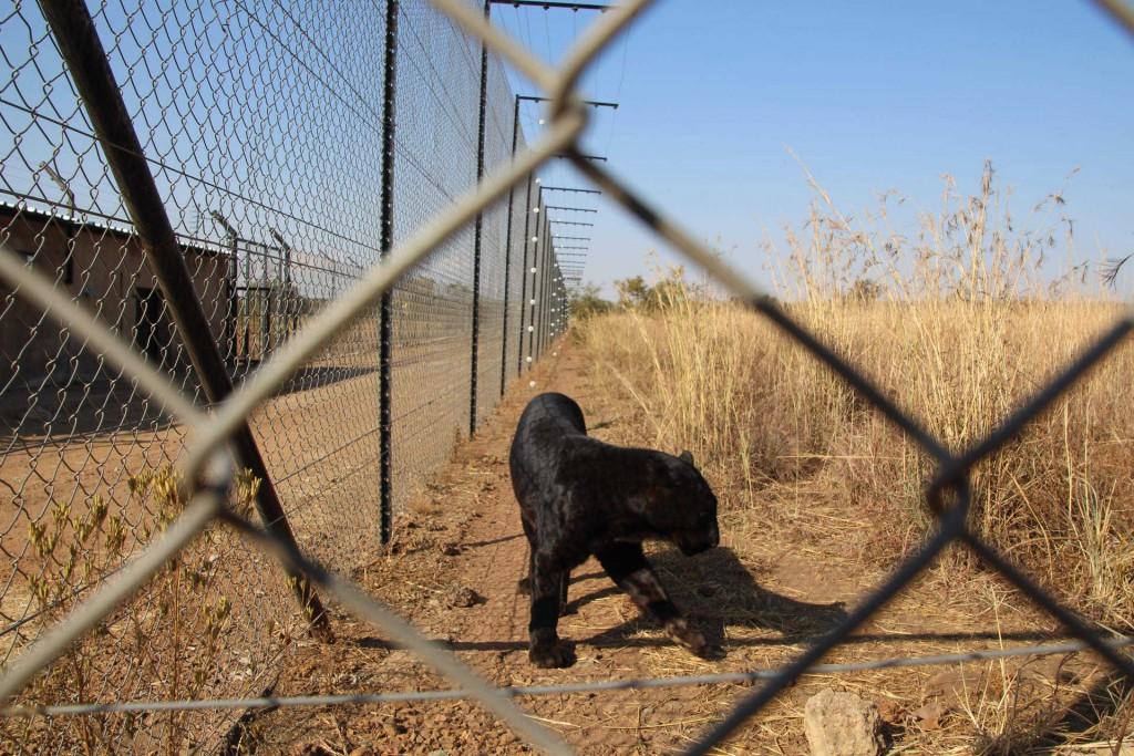 suedafrika-road-trip_5648