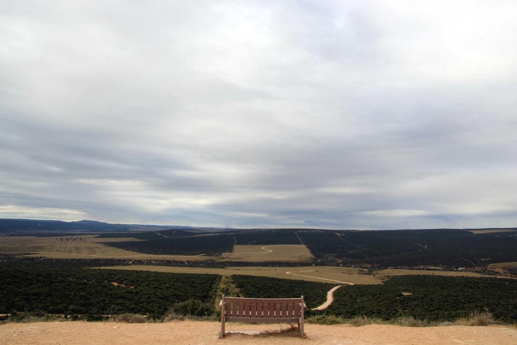 suedafrika-road-trip_6498